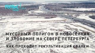 Мусорный полигон в Новосёлках и зловоние на севере Петербурга. Как проходит рекультивация свалки