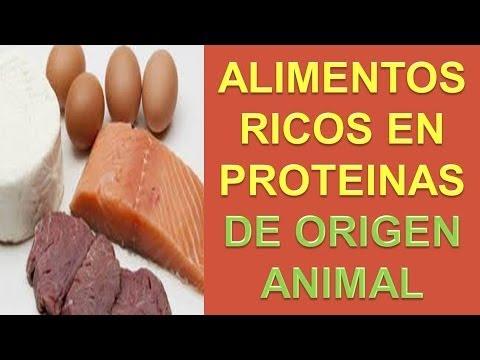 Alimentos ricos en proteinas proteina animal youtube - Alimentos vegetales ricos en proteinas ...