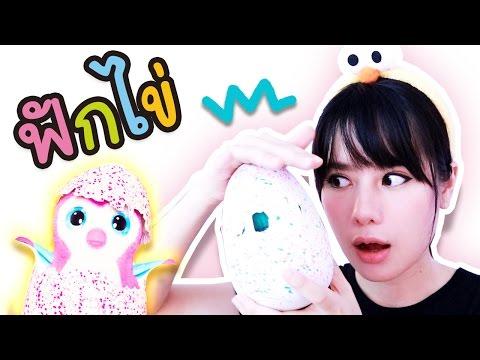 ฟักไข่ HATCHIMALS うまれて!WOOMO ของเล่นญี่ปุ่น 【Japanese Toys】 l ฝ้าย WiriWiri