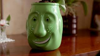 Billy-Billy, un pot de fleurs interactif