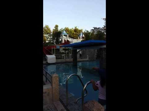 Saniya resort salawag dasma
