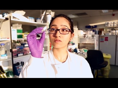 My career in genomics: cancer biology