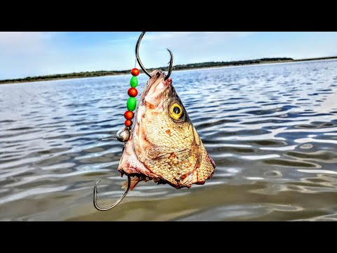 Using GIANTS Baits In A Catfish Tournament!!! (heart Break)