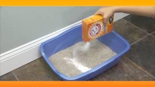 Eliminate Litter Box Smell:  Baking Soda Solutions