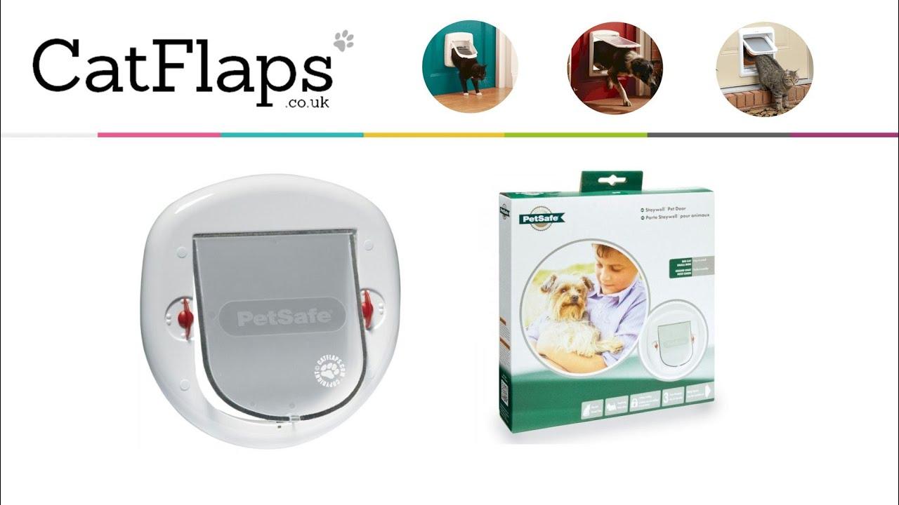 pet supplies com original door amazon petsafe dp hard medium transparent doors plastic with white flap