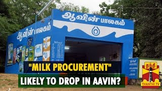 Milk Procurement Likely To Drop In Aavin? - Thanthi TV