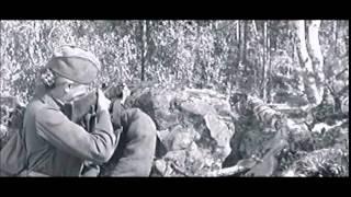 """Лучшие фильмы о войне - """"А зори здесь тихие"""" (1972 год), фрагменты 2-ой серии"""