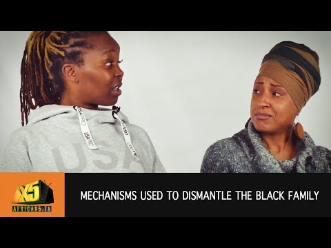 What mechanisms are used to dismantle the Black Family? THE PERSPECTIVE (S2 EP1)