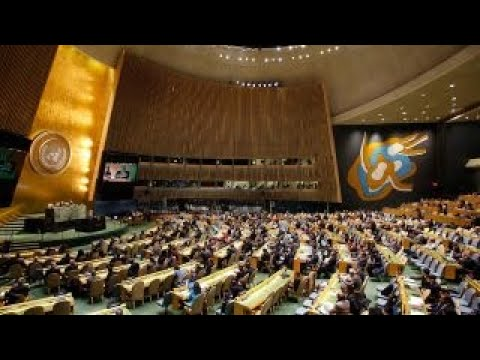What the UN vote means for Trump and Netanyahu