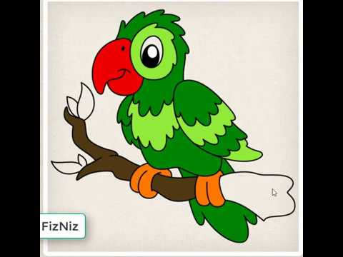 Parrot Drawing And Coloring For Kids