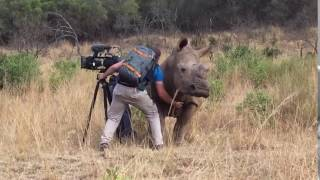 Filming Up Close And Personal With A Rhino! thumbnail