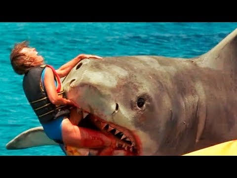 10-worst-shark-attacks-ever-recorded