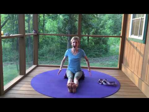 Beginner Yoga Dandasana Seated Staff pose