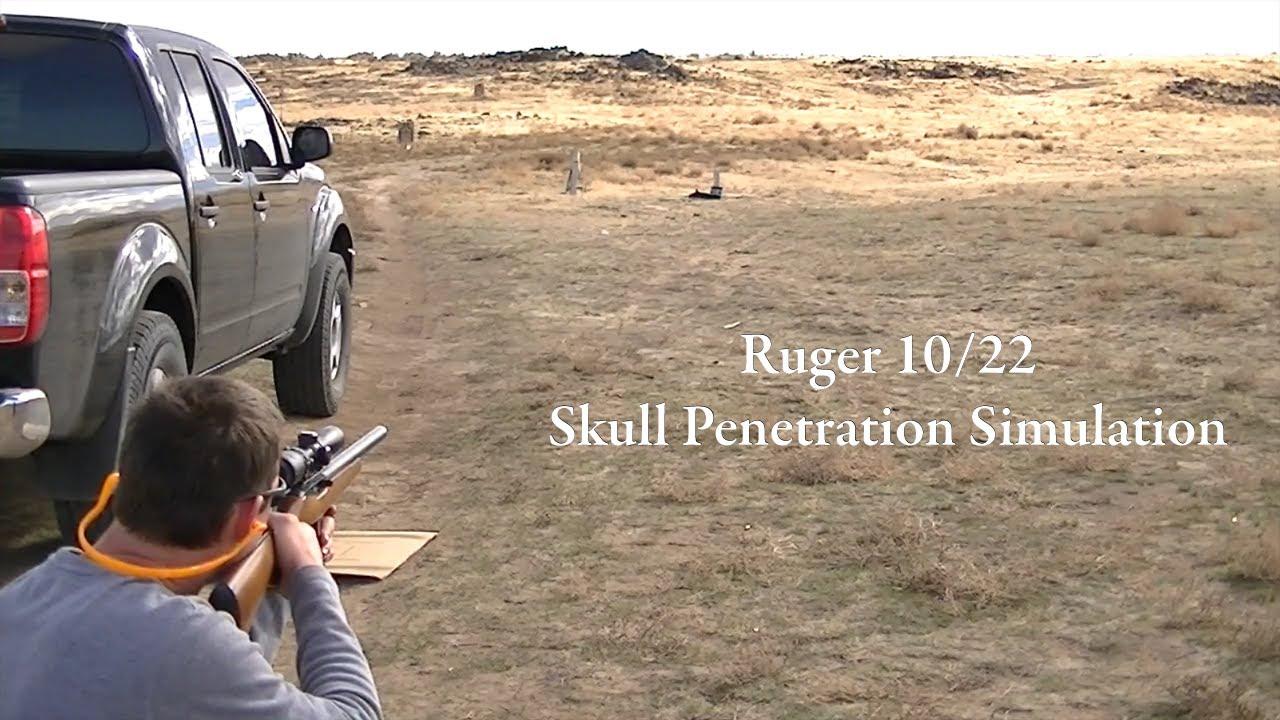 Head shot .22 penetration