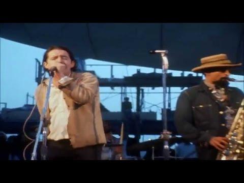 zd Woodstock 1969 Paul Butterfield Blues Band