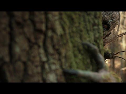 ARBOR DEMON (2017) Official Trailer (HD) Jake Busey, Fiona Dourif | CREATURE FEATURE