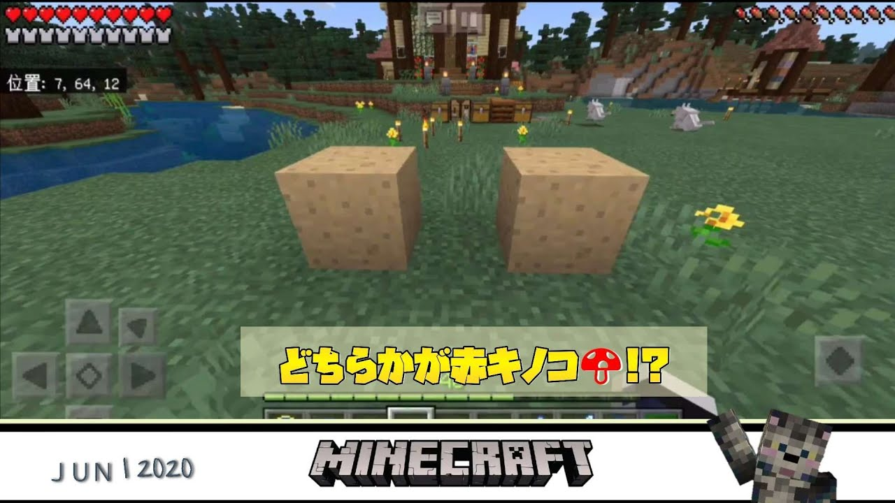 マイクラ キノコ ブロック