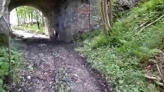Montgreenan's 'bridge Lost In Time', Auchentiber, Ayrshire