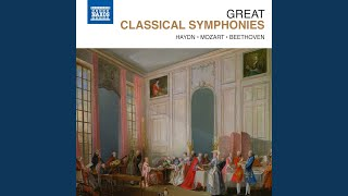 "Symphony No. 96 in D Major, Hob.I:96, ""The Miracle"": IV. Finale: Vivace assai"