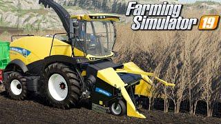 Koszenie topoli energetycznej - Farming Simulator 19   #89