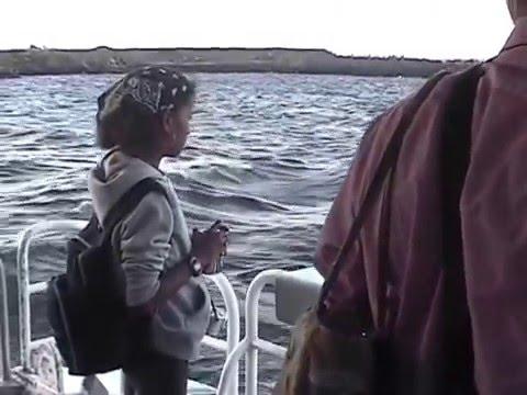 TOUR ROBBEN ISLAND 2004