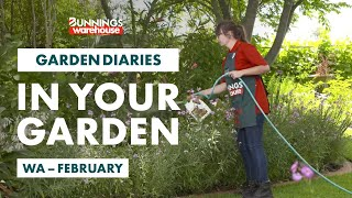 Gardening in February | Western Australia | Bunnings Garden Diary