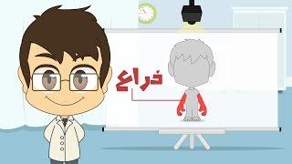 Human Body Parts in Arabic for Kids - أجزاء جسم الإنسان باللغة العربية للأطفال