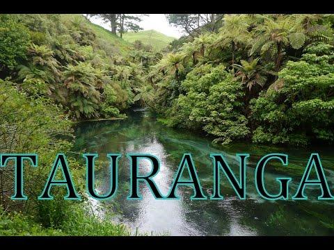TAURANGA | Neuseeland #15 | Kiwilicious