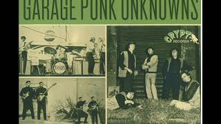 Last of the Garage Punk Unknowns, Volumes 5 & 6