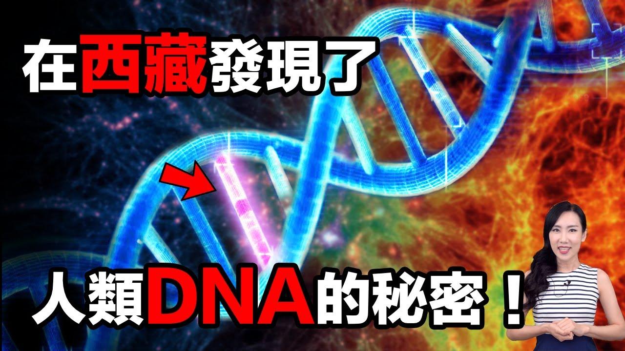 DNA連上神秘能量場!| 馬臉姐