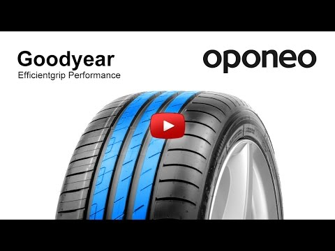 The best summer 2019 tyres in size 205/55 R16 according to