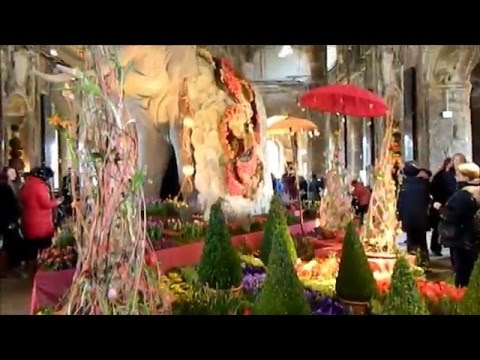Dresdner Frühling im Palais, Spring in the palais Dresden, Show of the flowers