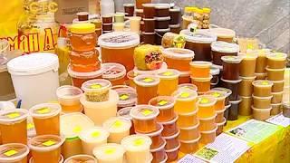 Мёд мёду - рознь!                       СТС-МИР.