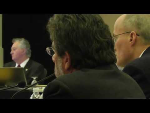 Disciplinary Hearing of Florida Psychiatrist James Yelton-Rossello