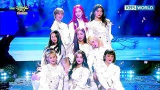 MOMOLAND - Curious / BBoom BBoom | 모모랜드 - 궁금해 / 뿜뿜 [Music Bank COMEBACK / 2018.01.05]