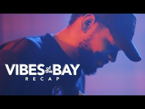 Vibes of the Bay 2017 Recap | Tampa Music Festival