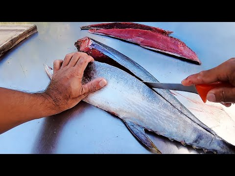 How To Fillet Tuna - From Start To Finish