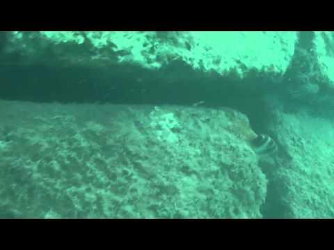 NAUTILUS UNDERWATER CONSTRUCTIONS VIDEO