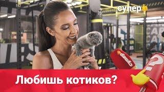 Интервью с котенком (и Таней Храмовой)