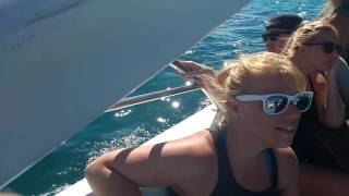 Anyone know this song? Party Catamaran Punta Cana 19-Jan-2017