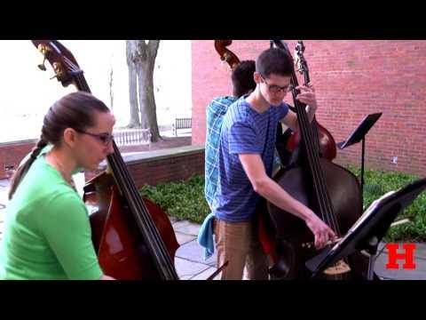 HARTT Symphony Strings