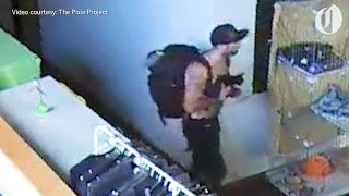 Shirtless, bowl-smoking bandit steals kitten from Portland pet shelter