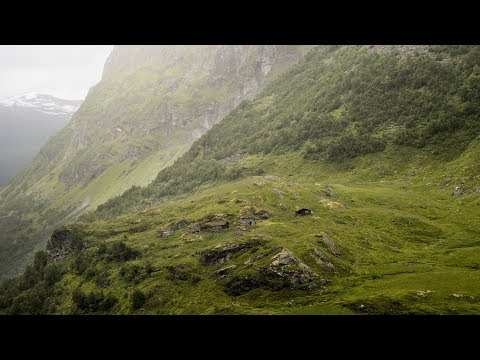 Wardruna Fehu  Runaljod – Yggdrasil