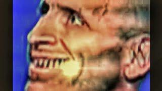 Reptilian Lee Rosenburg(mirrored).... Must watch!!!!