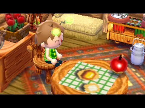 Bed Bugs - Animal Crossing: New Leaf | Dream Diary