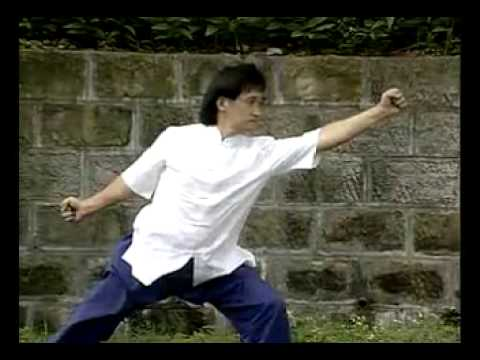 Shaolin Gung Li Quan