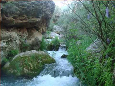Relajacion de rios riachuelos arroyos cascadas para for Cascadas para jardin fotos