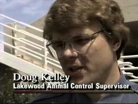 KWGN-TV 9pm News, April 22, 1993