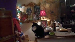 На видео Я (Александрова Татьяна Юрьевна 20 июня 1972 года рождения
