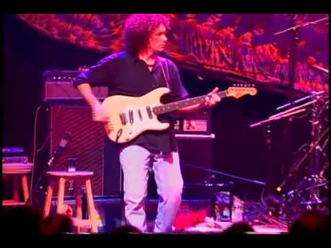 Cole's Law - Steve Kimock Band
